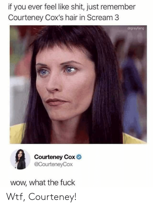 Scream, Shit, and Wow: if you ever feel like shit, just remember  Courteney Cox's hair in Scream 3  drgrayfang  Courteney Cox  @CourteneyCox  wow, what the fuck Wtf, Courteney!