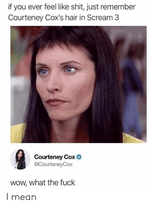 Dank, Scream, and Shit: if you ever feel like shit, just remember  Courteney Cox's hair in Scream 3  Courteney Cox  @CourteneyCox  wow, what the fuck I mean