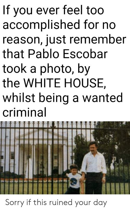 whilst: If you ever feel too  accomplished for no  reason, just remember  that Pablo Escobar  took a photo, by  the WHITE HOUSE  whilst being a wanted  criminal Sorry if this ruined your day