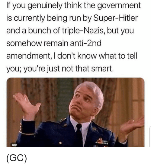 2nd Amendment: If you genuinely think the government  is currently being run by Super-Hitler  and a bunch of triple-Nazis, but you  somehow remain anti-2nd  amendment, I don't know what to tell  you; you're just not that smart.  GIF (GC)
