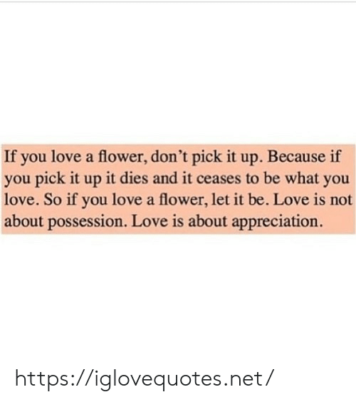 Love, Flower, and Net: If you love a flower, don't pick it up. Because if  you pick it up it dies and it ceases to be what you  love. So if you love a flower, let it be. Love is not  about possession. Love is about appreciation. https://iglovequotes.net/