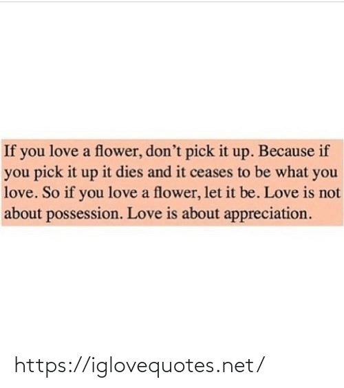 Pick: If you love a flower, don't pick it up. Because if  you pick it up it dies and it ceases to be what you  love. So if you love a flower, let it be. Love is not  about possession. Love is about appreciation. https://iglovequotes.net/