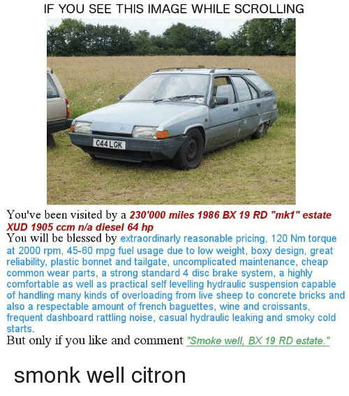 """torque: IF YOU SEE THIS IMAGE WHILE SCROLLING  C44 LGK  You've been visited by a 230'000 miles 1986 BX 19 RD """"mk1"""" estate  XUD 1905 ccm n/a diesel 64 h  You will be blessed by  extraordinarly reasonable pricing, 120 Nm torque  at 2000 rpm, 45-60 mpg fuel usage due to low weight, boxy design, great  reliability, plastic bonnet and tailgate, uncomplicated maintenance, cheap  common wear parts, a strong standard 4 disc brake system, a highly  comfortable as well as practical self levelling hydraulic suspension capable  of handling many kinds of overloading from live sheep to concrete bricks and  also a respectable amount of french baguettes, wine and croissants,  frequent dashboard rattling noise, casual hydraulic leaking and smoky cold  starts  But only if you like and comment  Smoke well BX 19 RD estate."""" smonk well citron"""