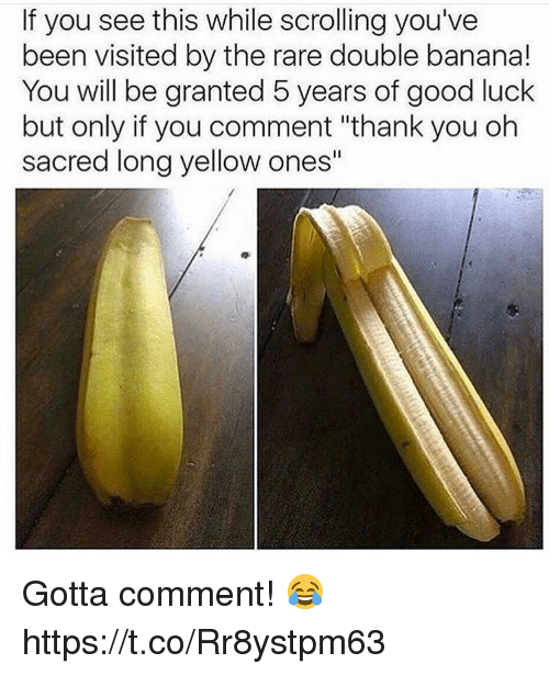 """Memes, Thank You, and Banana: If you see this while scrolling you've  been visited by the rare double banana!  You will be granted 5 years of good luck  but only if you comment """"thank you oh  sacred long yellow ones"""" Gotta comment! 😂 https://t.co/Rr8ystpm63"""