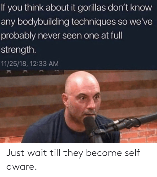 self aware: If you think about it gorillas don't know  any bodybuilding techniques so we've  probably never seen one at ful  strength.  11/25/18, 12:33 AM Just wait till they become self aware.