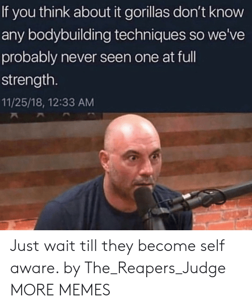 self aware: If you think about it gorillas don't know  any bodybuilding techniques so we've  probably never seen one at ful  strength.  11/25/18, 12:33 AM Just wait till they become self aware. by The_Reapers_Judge MORE MEMES