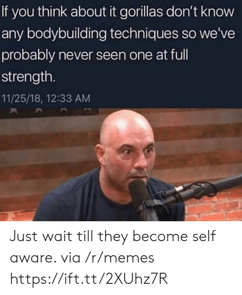 self aware: If you think about it gorillas don't know  any bodybuilding techniques so we've  probably never seen one at ful  strength.  11/25/18, 12:33 AM Just wait till they become self aware. via /r/memes https://ift.tt/2XUhz7R