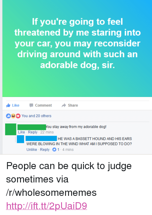 """Driving, Http, and Adorable: If you're going to feel  threatened by me staring into  your car, you may reconsider  driving around with such an  adorable dog, sir.  LikeCommentShare  You and 20 others  You stay away from my adorable dog!  Like Reply 22 mins  HEWAS A BASSETT HOUND AND HIS EARS  WERE BLOWING IN THE WIND WHAT AM I SUPPOSED TO DO?  Unlike Reply 1-4mins <p>People can be quick to judge sometimes via /r/wholesomememes <a href=""""http://ift.tt/2pUaiD9"""">http://ift.tt/2pUaiD9</a></p>"""
