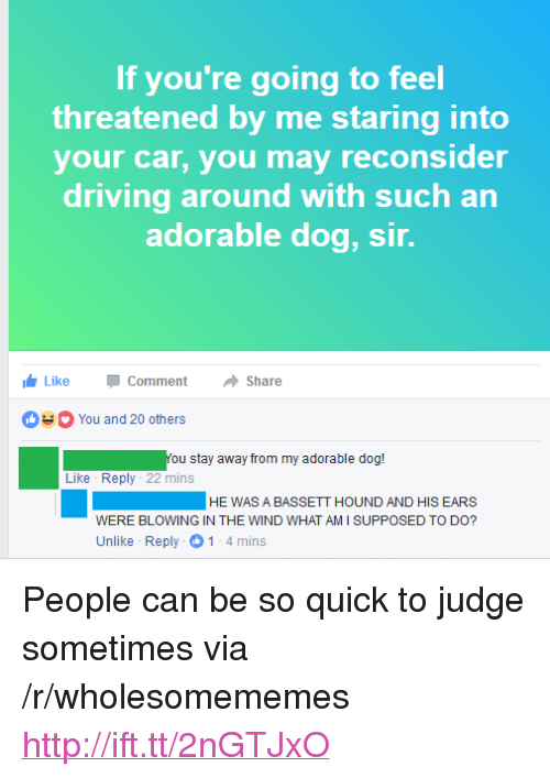 """Driving, Http, and Adorable: If you're going to feel  threatened by me staring into  your car, you may reconsider  driving around with such an  adorable dog, sir.  LikeCommentShare  You and 20 others  You stay away from my adorable dog!  Like Reply 22 mins  HEWAS A BASSETT HOUND AND HIS EARS  WERE BLOWING IN THE WIND WHAT AM I SUPPOSED TO DO?  Unlike Reply 1-4mins <p>People can be so quick to judge sometimes via /r/wholesomememes <a href=""""http://ift.tt/2nGTJxO"""">http://ift.tt/2nGTJxO</a></p>"""