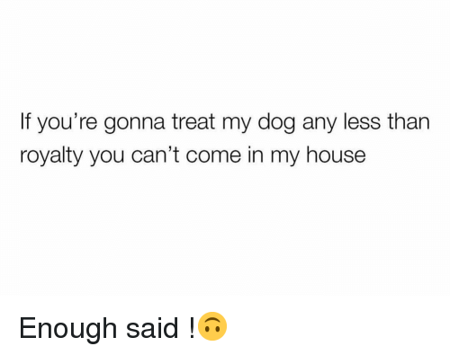 Funny, My House, and House: If you're gonna treat my dog any less than  royalty you can't come in my house Enough said !🙃