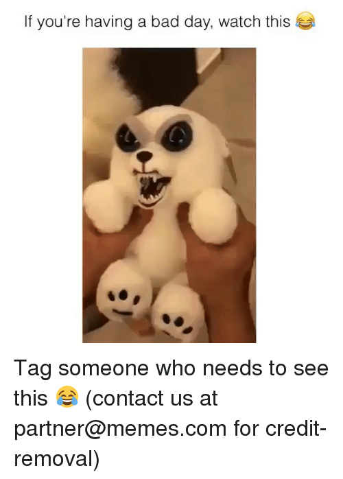 Bad, Bad Day, and Memes: If you're having a bad day, watch this Tag someone who needs to see this 😂 (contact us at partner@memes.com for credit-removal)