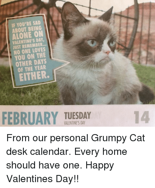 Grumpy Cats: IF YOU'RE SAD  ABOUT BEING  ON  VALENTINE'S DAY  JUST REMEMBER...  NO ONE YOU ON THE  OTHER DAYS  EITHER.  FEBRUARY TUESDAY  VALENTINE'S DAY From our personal Grumpy Cat desk calendar. Every home should have one. Happy Valentines Day!!