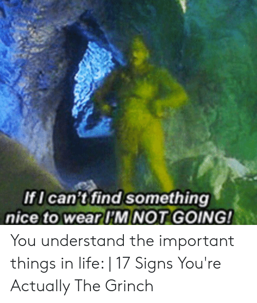 The Grinch: IfI can't find something  nice to wear I'M NOT GOING! You understand the important things in life: | 17 Signs You're Actually The Grinch