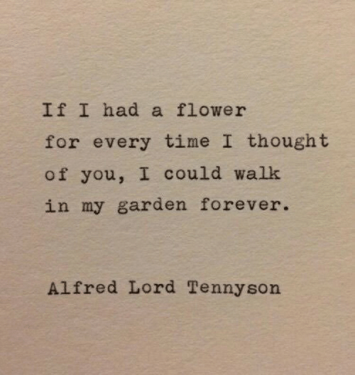 Flower, Forever, and Time: IfI had a flower  for every time I thought  of you, I could walk  in my garden forever.  Alfred Lord Tennyson