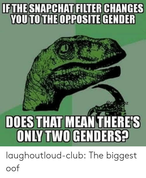 Genders: IFTHESNAPCHAT FILTER CHANGES  YOU TO THE OPPOSITE GENDER  DOES THAT MEAN THERE'S  ONLY TWO GENDERS? laughoutloud-club:  The biggest oof