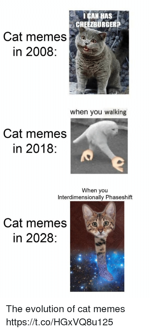 Memes, Evolution, and Cat: IGAN HAS  CHEEZBURGER?  Cat memes  in 2008:  when you walking  Cat memes  in 2018:  When you  Interdimensionally Phaseshift  Cat memes  in 2028: The evolution of cat memes https://t.co/HGxVQ8u125
