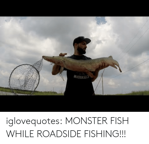 Monster, Tumblr, and Blog: iglovequotes: MONSTER FISH WHILE ROADSIDE FISHING!!!