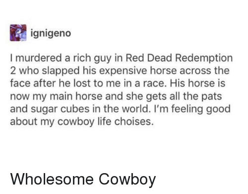 feeling good: ignigeno  I murdered a rich guy in Red Dead Redemption  2 who slapped his expensive horse across the  face after he lost to me in a race. His horse is  now my main horse and she gets all the pats  and sugar cubes in the world. I'm feeling good  about my cowboy life choises. Wholesome Cowboy