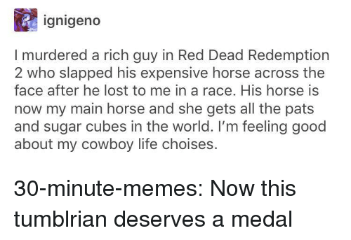 feeling good: ignigeno  I murdered a rich guy in Red Dead Redemption  2 who slapped his expensive horse across the  face after he lost to me in a race. His horse is  now my main horse and she gets all the pats  and sugar cubes in the world. I'm feeling good  about my cowboy life choises. 30-minute-memes:  Now this tumblrian deserves a medal
