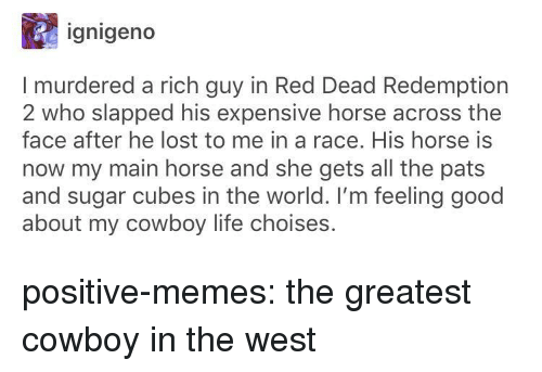 feeling good: ignigeno  I murdered a rich guy in Red Dead Redemption  2 who slapped his expensive horse across the  face after he lost to me in a race. His horse is  now my main horse and she gets all the pats  and sugar cubes in the world. I'm feeling good  about my cowboy life choises. positive-memes:  the greatest cowboy in the west