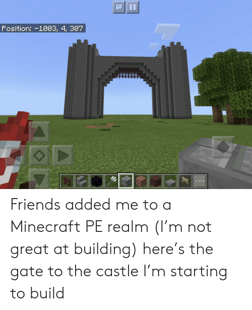 Friends, Minecraft, and The Castle: II  Fosition: -1003, 4, 307 Friends added me to a Minecraft PE realm (I'm not great at building) here's the gate to the castle I'm starting to build