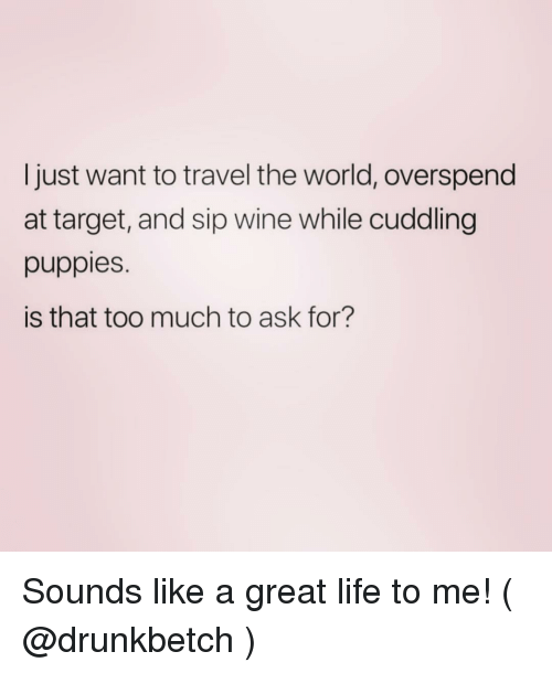 Life, Puppies, and Target: Ijust want to travel the world, overspend  at target, and sip wine while cuddling  puppies.  is that too much to ask for? Sounds like a great life to me! ( @drunkbetch )