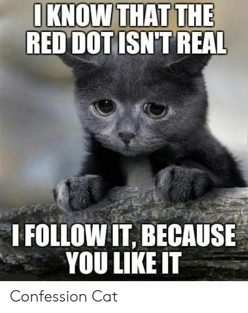Cat, Red, and Dot: IKNOW THAT THE  RED DOT ISN'T REAL  I FOLLOW IT, BECAUSE  YOU LIKE IT Confession Cat