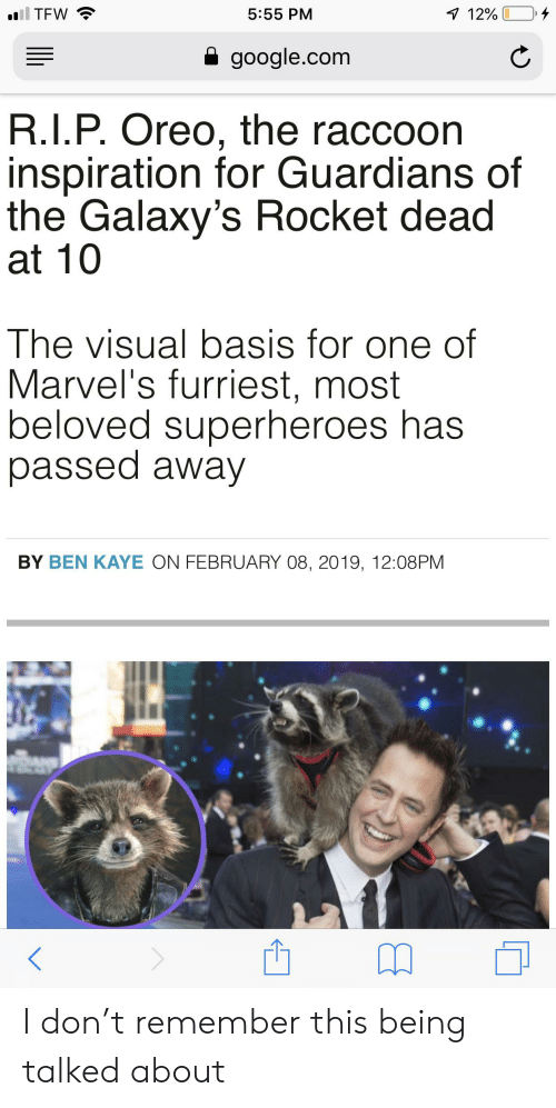 Google, Tfw, and google.com: il TFW  1 12%  5:55 PM  google.com  R.I.P. Oreo, the raccoon  inspiration for Guardians of  the Galaxy's Rocket dead  at 10  The visual basis for one of  Marvel's furriest, most  beloved superheroes has  passed away  BY BEN KAYE ON FEBRUARY 08, 2019, 12:08PM I don't remember this being talked about