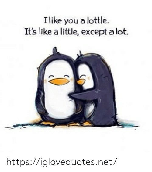 Its Like: Ilike you a lottle.  It's like a little, except a lot. https://iglovequotes.net/