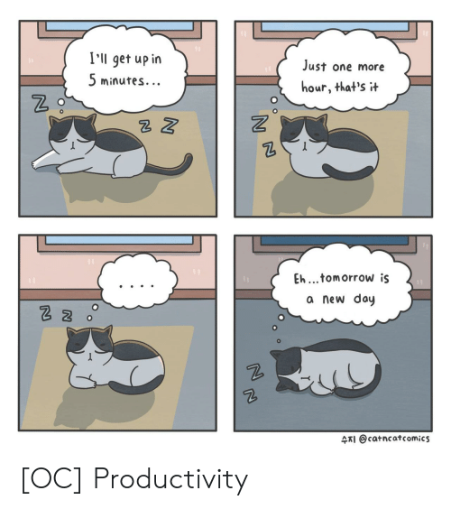 productivity: I'll get up in  5 minutes.  Just one more  hour, that's t  2  Eh...tomorrow is  a new doy  수지 @catncat comics [OC] Productivity
