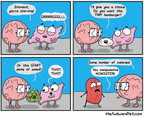 hamburger: I'll give you a choice.  Stomach  you're starving!  Do you want this  TINY hamburger?  Same number of calories!  Or this GIANT  plate of salad?THAT!  You manipulative  MONSSTER  THAT!  theAwkwardYeti.com