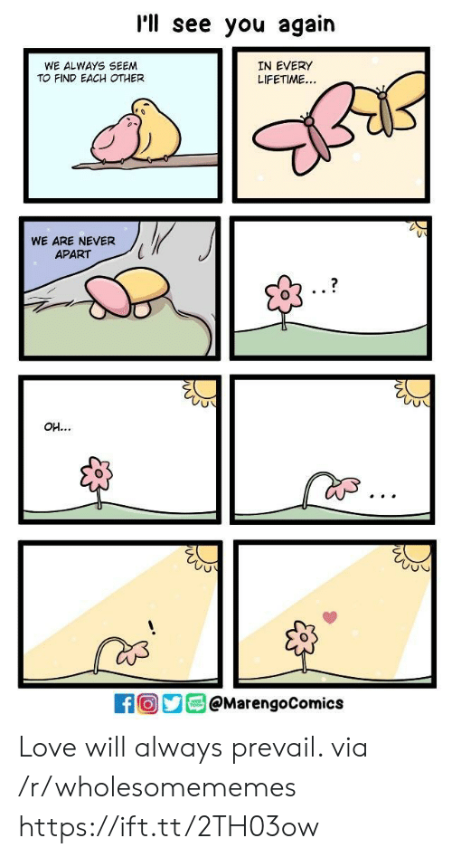 Love, Lifetime, and See You Again: I'll see you again  WE ALWAYS SEEM  TO FIND EACH OTHER  IN EVERY  LIFETIME...  WE ARE NEVER  APART  1  Oy@MarengoComics Love will always prevail. via /r/wholesomememes https://ift.tt/2TH03ow