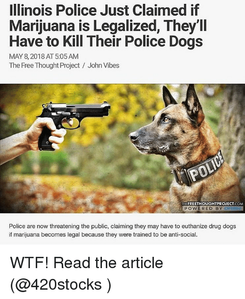 Dogs, Police, and Weed: Illinois Police Just Claimed if  Marijuana is Legalized, They'll  Have to Kill Their Police Dogs  MAY 8,2018 AT 5:05AM  The Free Thought Project / John Vibes  THEFREETHOUGHTPROJECT.COM  POWERED BYD  Police are now threatening the public, claiming they may have to euthanize drug dogs  if marijuana becomes legal because they were trained to be anti-social. WTF! Read the article (@420stocks )