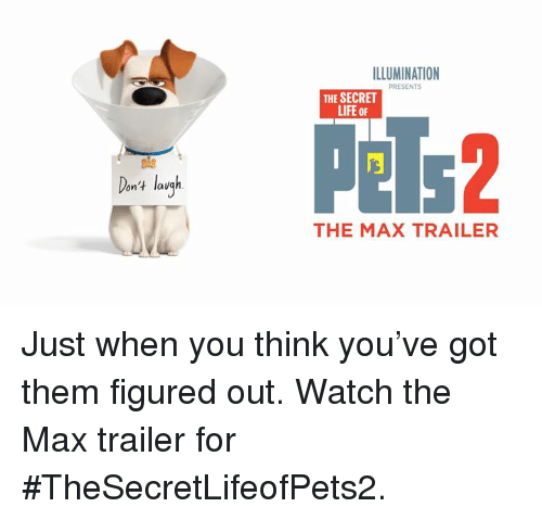 Life, Memes, and Watch: ILLUMINATION  PRESENTS  THE SECRET  LIFE oF  Pels2  ele  on't lav  THE MAX TRAILER Just when you think you've got them figured out. Watch the Max trailer for #TheSecretLifeofPets2.