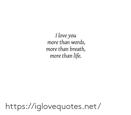 Life, Net, and More Than Words: Ilove you  more than words,  more than breath,  more than life. https://iglovequotes.net/