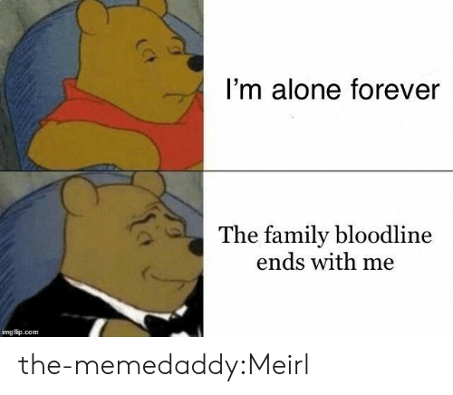 Being Alone, Family, and Target: I'm alone forever  The family bloodline  ends with me  imgflip.com the-memedaddy:Meirl