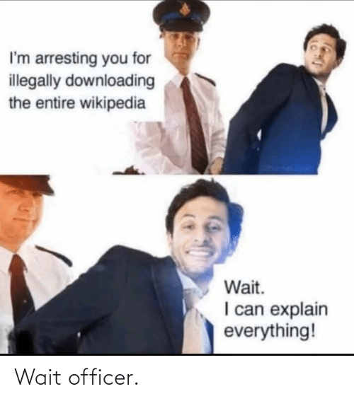 everything: I'm arresting you for  illegally downloading  the entire wikipedia  Wait.  I can explain  everything! Wait officer.