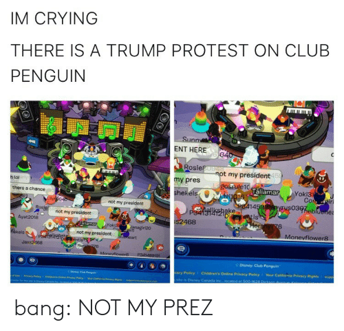 policy: IM CRYING  THERE IS A TRUMP PROTEST ON CLUB  PENGUIN  Sunn  ENT HERE  Rosie  my pres  hekéls  t my president  15  h lol  laliamar  Yoki3  thers a chance  not my president  14  03heb  ake  Di  not my president  is  Ayat 2018  468  6  oki3  Monevflower8  kels  not my president  Jass2468  Disney Club Penguin  acy Policy  Children's Online Privacy Policy 1 Your California Privacy Rights I supp  site is Disney Caneda bang:  NOT MY PREZ