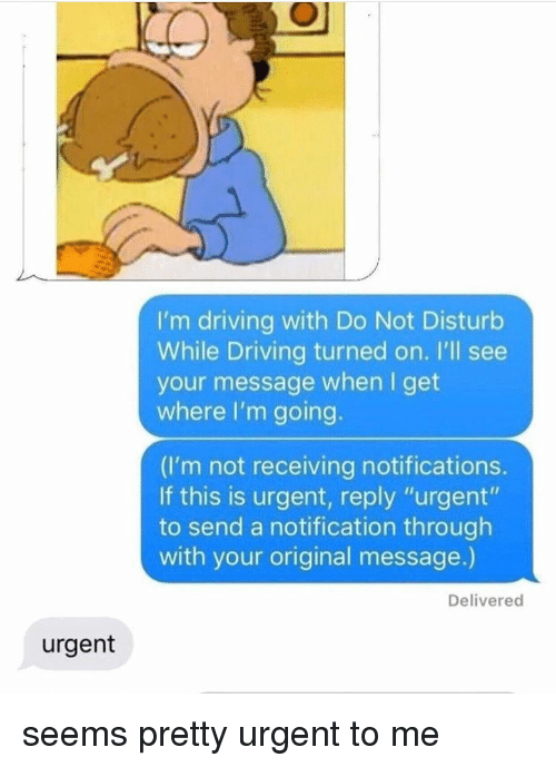 "Driving, Tumblr, and Reply: I'm driving with Do Not Disturb  While Driving turned on. I'll see  your message when I get  where I'm going.  (I'm not receiving notifications.  If this is urgent, reply ""urgent""  to send a notification through  with your original message.)  Delivered  urgent seems pretty urgent to me"