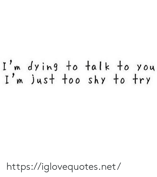 Net, You, and Shy: I'm dying to talk to you  I'm just too shy to try https://iglovequotes.net/