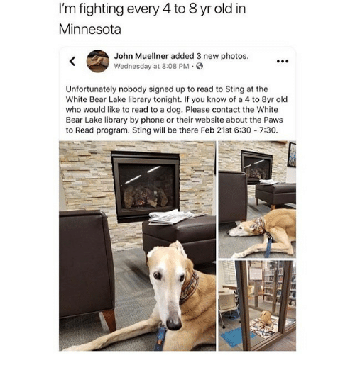Memes, Phone, and Bear: I'm fighting every 4 to 8 yr old in  Minnesota  John Muellner added 3 new photos.  Wednesday at 8:08 PM .  .0  Unfortunately nobody signed up to read to Sting at the  White Bear Lake library tonight. If you know of a 4 to 8yr old  who would like to read to a dog. Please contact the White  Bear Lake library by phone or their website about the Paws  to Read program. Stingill be there Feb 21st 6:30-7:30