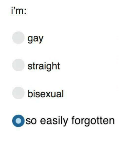 Bisexual, Im Gay, and Gay: i'm  gay  straight  bisexual  Oso easily forgotten