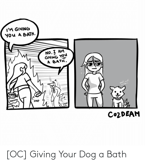 No I: I'M GIVING  YOU A BATH.  NO. I AM  GIVING YOU  A BATH.  woof woof,  bitches.  SHAMPOO  SOAP  CO2DEAM [OC] Giving Your Dog a Bath