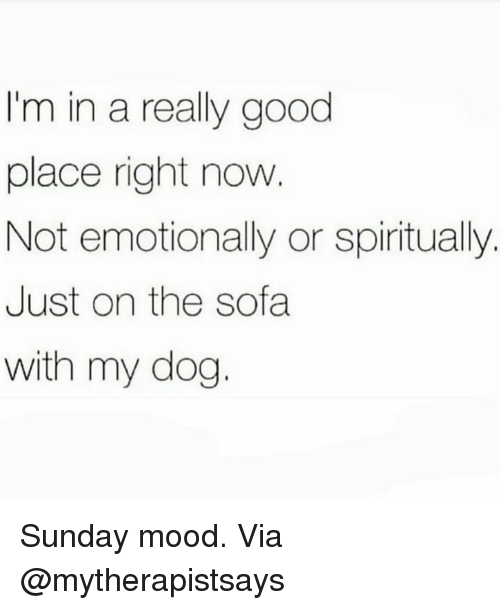 Memes, Mood, and Good: I'm in a really good  place right now  Not emotionally or spiritually.  Just on the sofa  with my dog. Sunday mood. Via @mytherapistsays