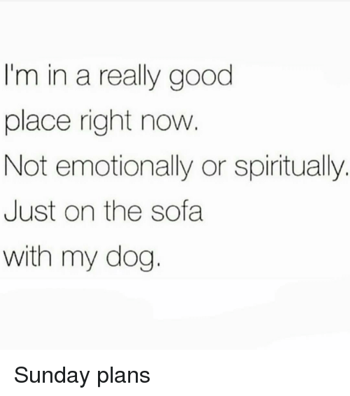 Good, Sunday, and Girl Memes: I'm in a really good  place right now  Not emotionally or spiritually.  Just on the sofa  with my dog. Sunday plans