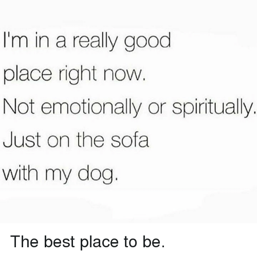Good Place: I'm in a really good  place right now  Not emotionally or spiritually.  Just on the sofa  with my dog. The best place to be.