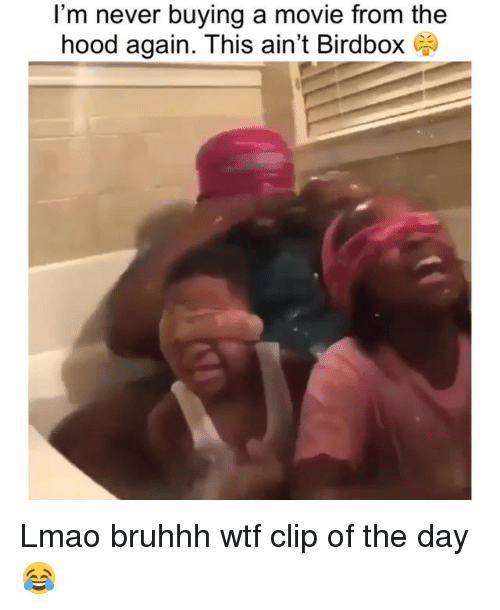 Funny, Lmao, and The Hood: I'm never buying a movie from the  hood again. This ain't Birdbox Lmao bruhhh wtf clip of the day 😂