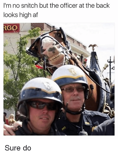 Af, Ironic, and Snitch: I'm no snitch but the officer at the back  looks high af  RGO Sure do