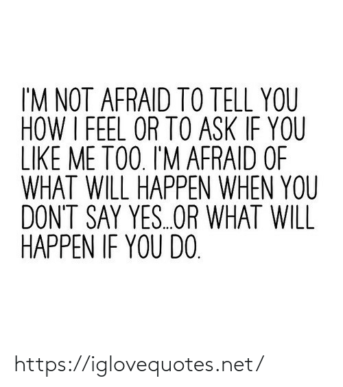 me too: I'M NOT AFRAID TO TELL YOU  HOW I FEEL OR TO ASK IF YOU  LIKE ME TOO. I'M AFRAID OF  WHAT WILL HAPPEN WHEN YOU  DON'T SAY YES.OR WHAT WILL  HAPPEN IF YOU DO. https://iglovequotes.net/