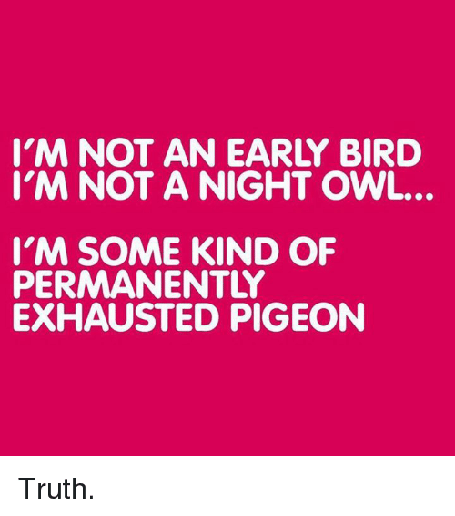 Exhausted Pigeon: I'M NOT AN EARLY BIRD  I'M NOT A NIGHT OWL.  I'M SOME KIND OF  PERMANENTLY  EXHAUSTED PIGEON Truth.